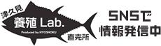 津久見 養殖 Lab. 直売所